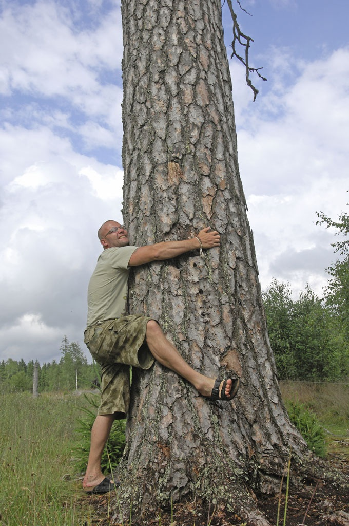 A happy man hugs a big tree. Meet the artist in Uddebo with Meet the Locals.