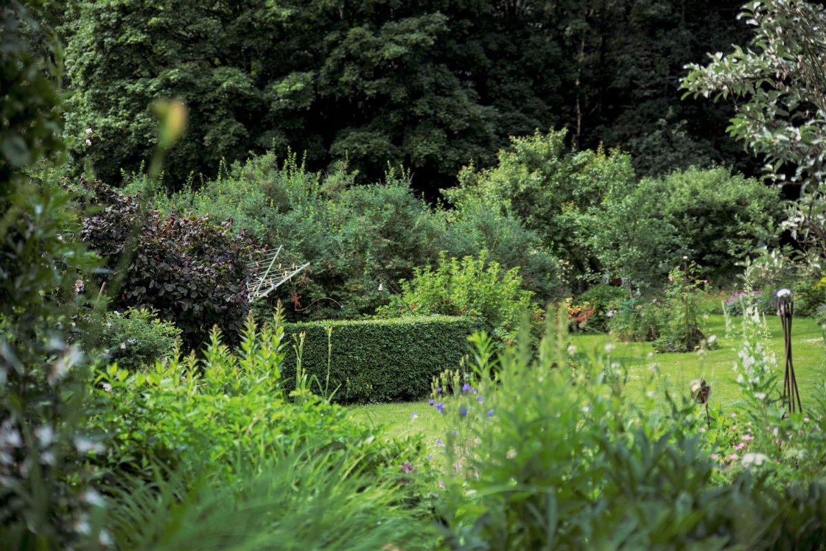 Trädgård utanför Rävlanda. Träffa trädgårdsmästaren i sin egen trädgård utanför Rävlanda. Med konceptet Meet the Locals