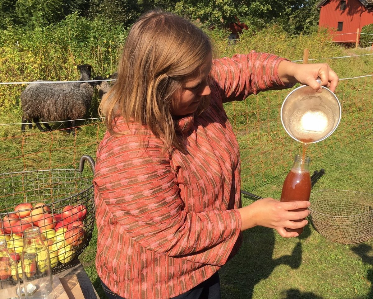 Girl making apple juice. In Ekebo, on the island of Kållandsö near Läckö Castle you can visit them on their organic farm with the concept Meet the Locals.