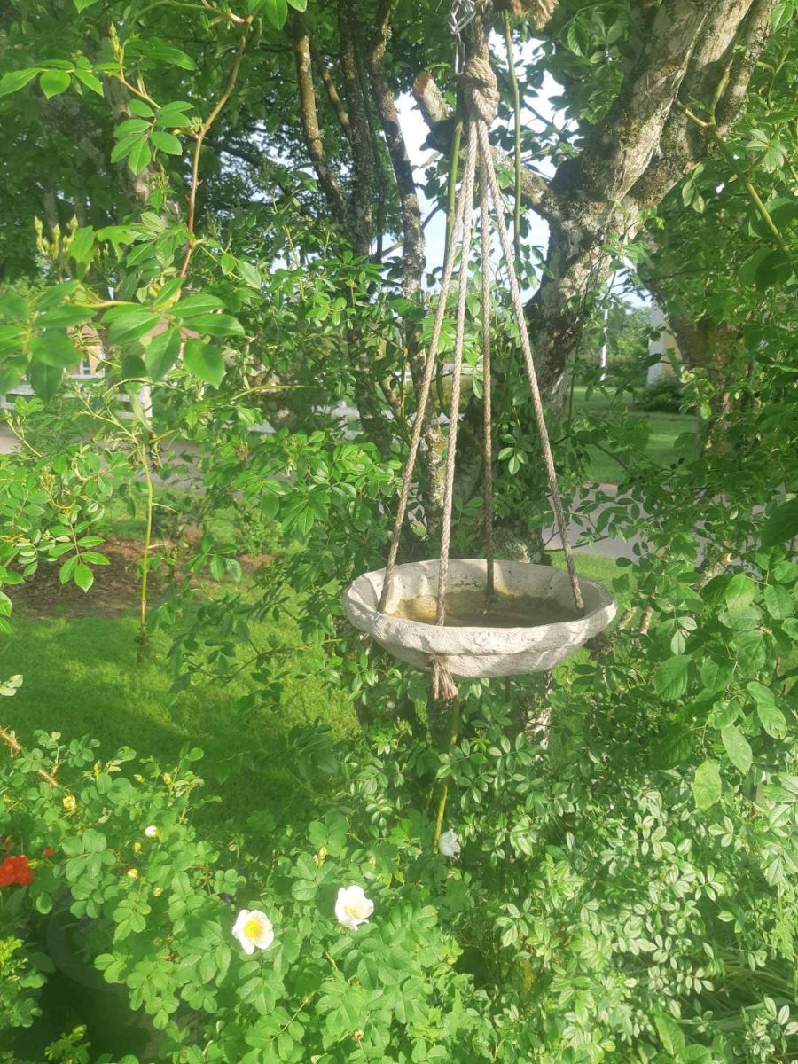 Garden decoration. In Hyssna Marks County you can visit a private garden with Meet the Locals