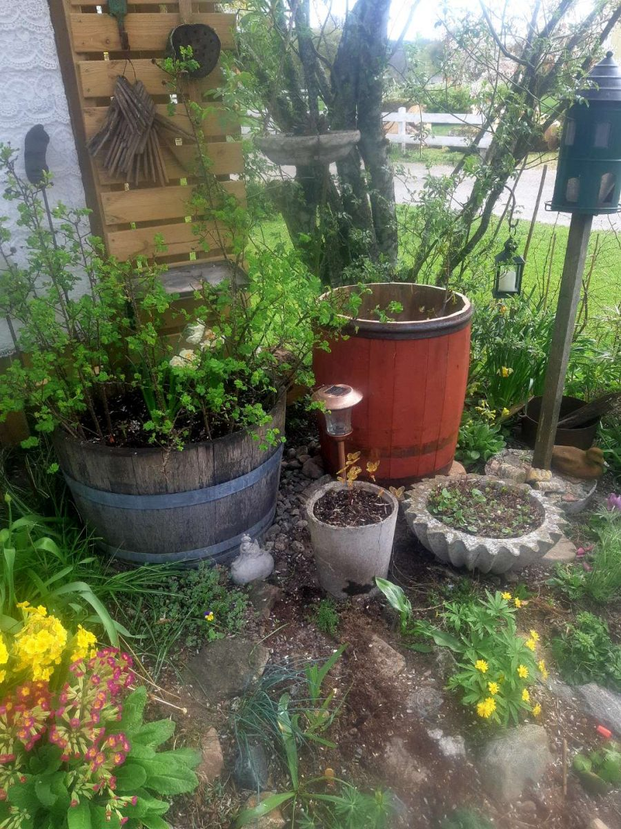 Garden decoration. pots. In Hyssna Marks County you can visit a private garden with Meet the Locals